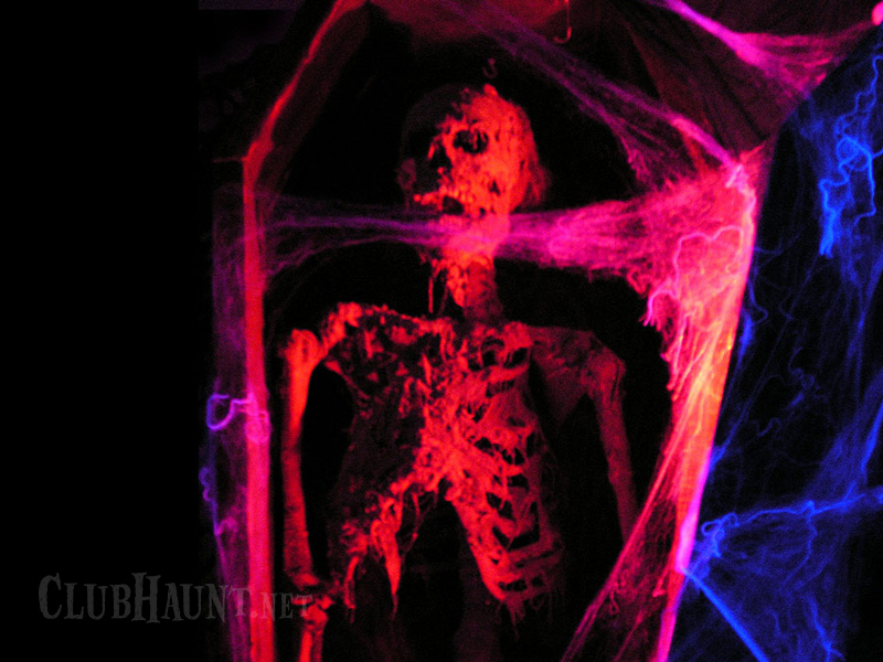 http://www.clubhaunt.net/downloads_images/skeleton800.jpg